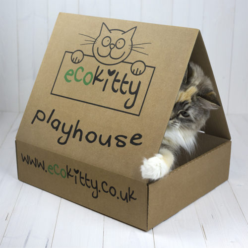 suzie-playhouse-1-web